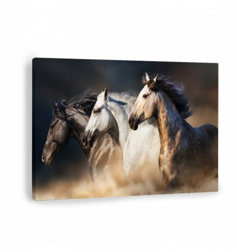 Equine Force